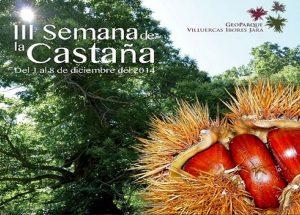 Castaña-01